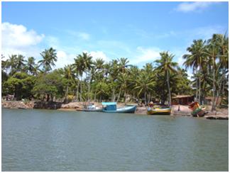 Porto de Camurupim