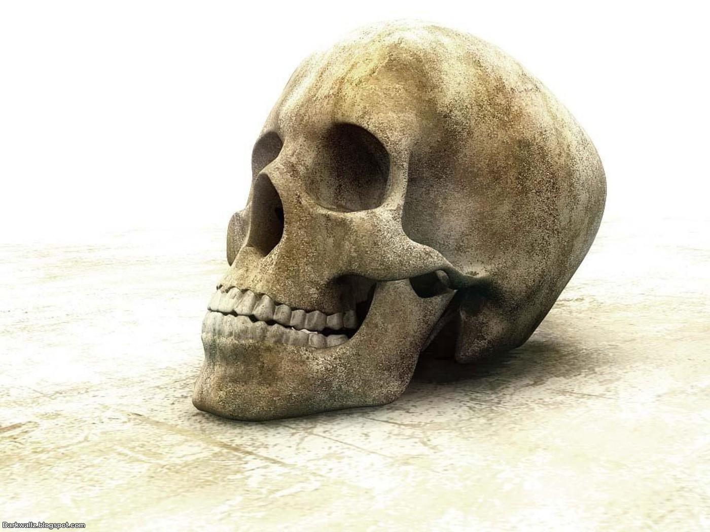 Skulls Wallpapers 60 | Dark Wallpaper Download