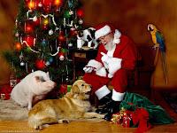 Christmas Wallpaper Santa