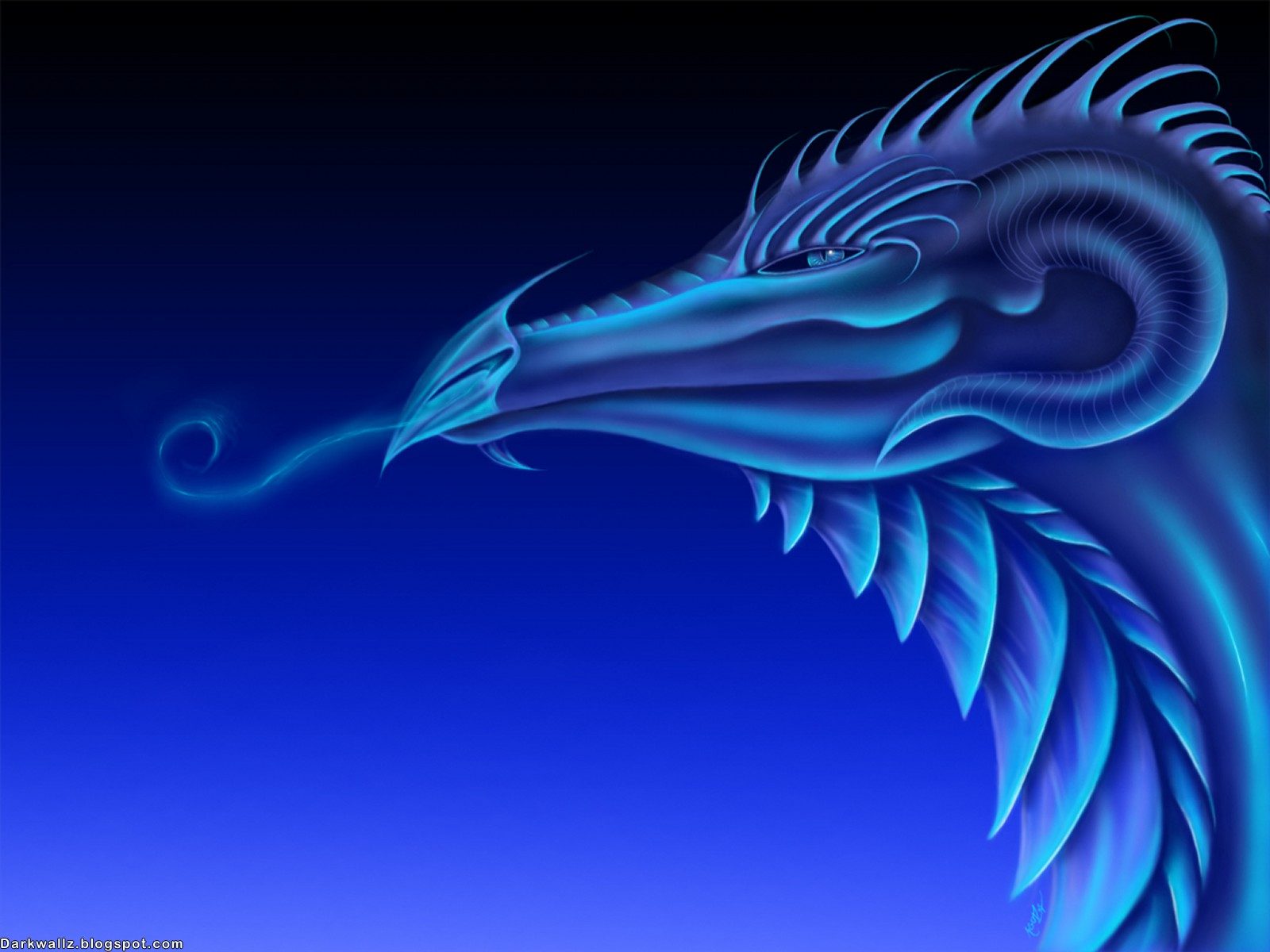Dark Dragons Wallpapers  62| Dark Wallpaper Download