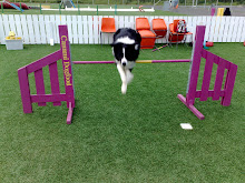 Agility on hauskaa!