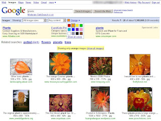 Image Search with Color