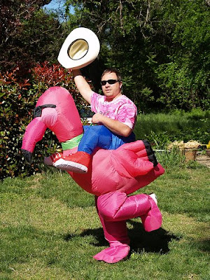 Funny pink flamingo costume