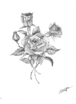 Image Dibujos De Rosas A Lapiz 9 10 From 58 Votes Download