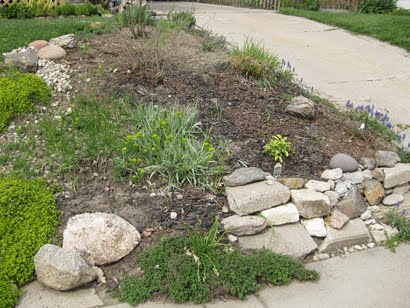 Early Front Rock Garden