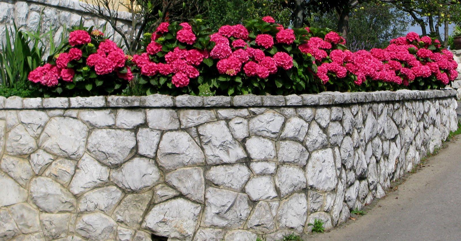 En tu jard n julio 2010 - Arriate jardin ...