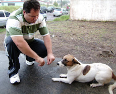 AMÔR AOS ANIMAIS