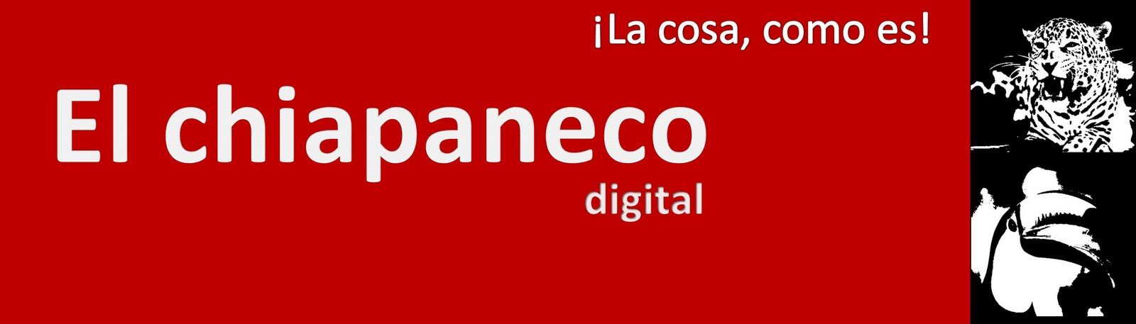 El chiapaneco digital