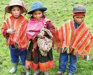 grupo indigenas de sonora: