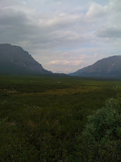 Mile 30 Denali Hwy, Alaska