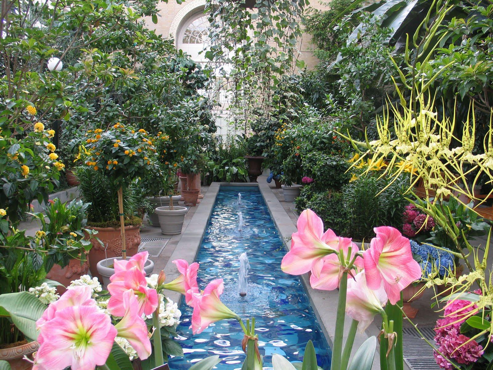 Ghetto Gardens Us Botanic Gardens