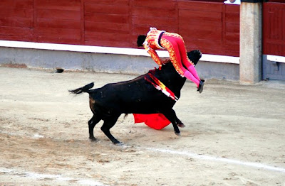 Cogida de Perera en Madrid