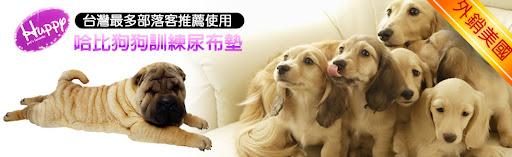 哈比狗狗寵物訓練尿布墊-線上訂購中心