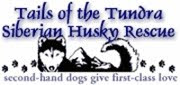 Can You Please Open Your Heart & Home to a Husky in Need of a Hu-Family?