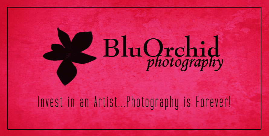 BluOrchid Photography
