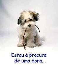 Adote um cachorrinho e encha sua vida de Alegria