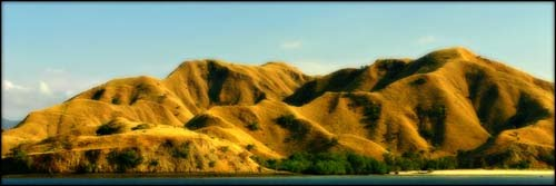 di indonesia yang paling dibanggakan wisata indonesia 1 pulau komodo