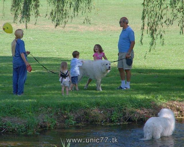 http://3.bp.blogspot.com/_-x7gqq9QJuA/TH4F8DF-jYI/AAAAAAAAQ9I/50LdHnXRJp4/s1600/animals_vs_humans_36.jpg