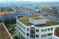 green building, green house, green garden, roof garden, beautiful roof garden