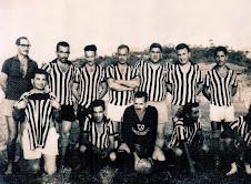 Acervo Varzeano Regional-nº 42