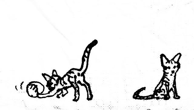 Lulu chaton