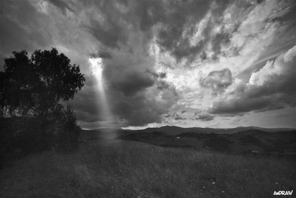 Citate Din Fotografie : Despre viata prin fotografie ratiune