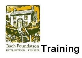 巴哈中心的課程介紹網頁Logo