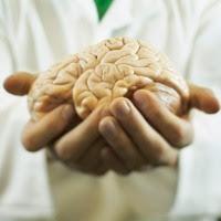 otak cewek