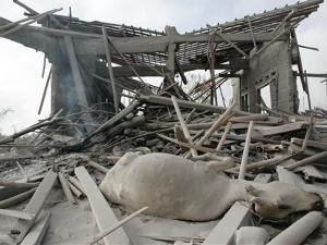 Foto-foto Terbaru letusan Merapi