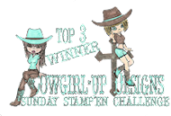 I made Top 4 at Cowgirl Up