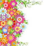 paleta bucolores