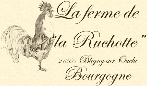 La Ruchotte le Blog-Gastronomie-Bio-Aviculture et autres élevages...