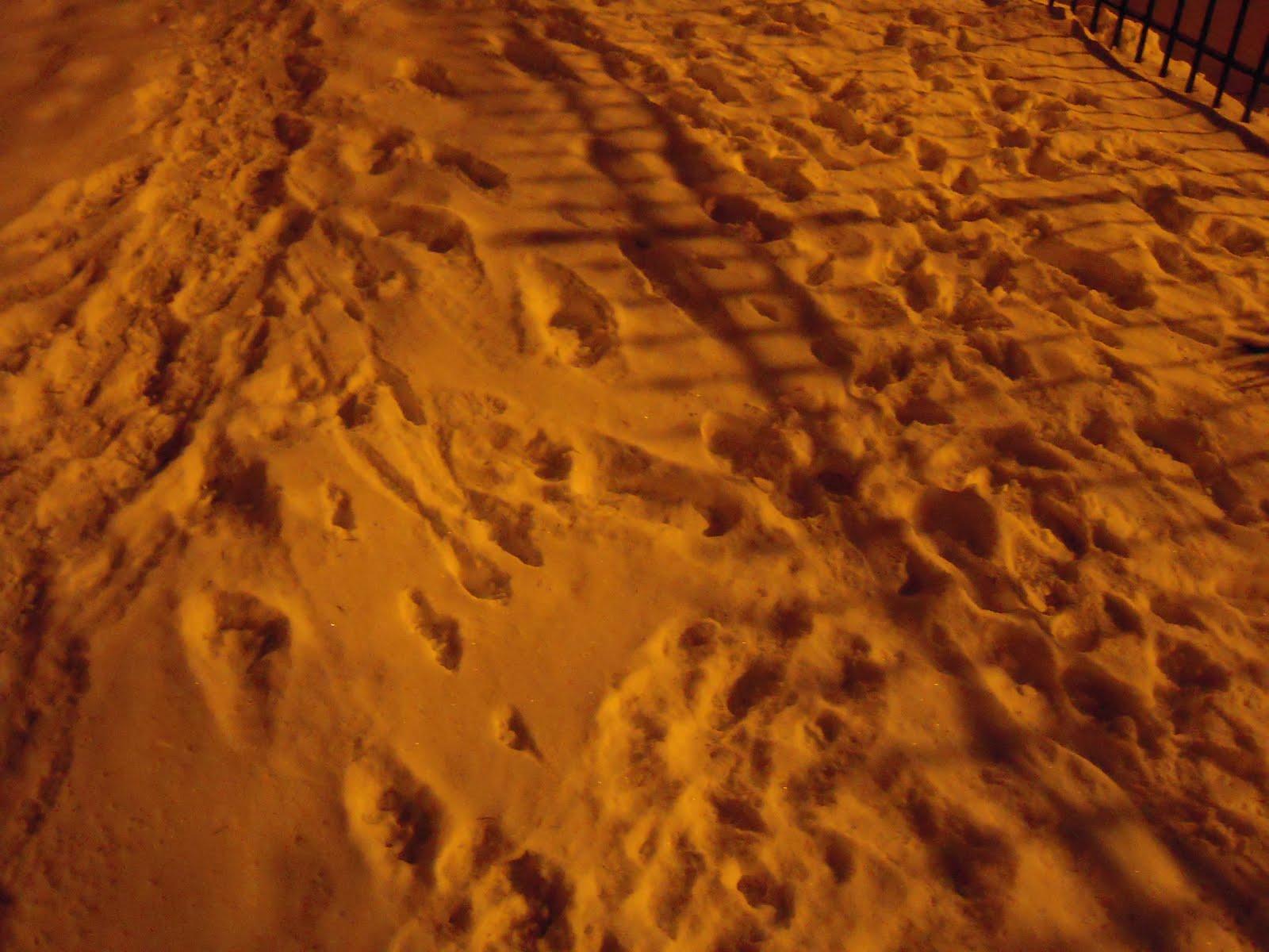 [sand+tracks]