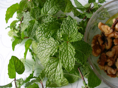 mint walnut chutney healthy food recipe
