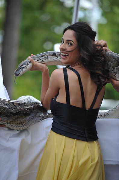 mallika sherawat kiss. Mallika+sherawat+kissing+