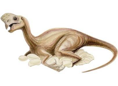 Resultado de imagen de oviraptor incubacion