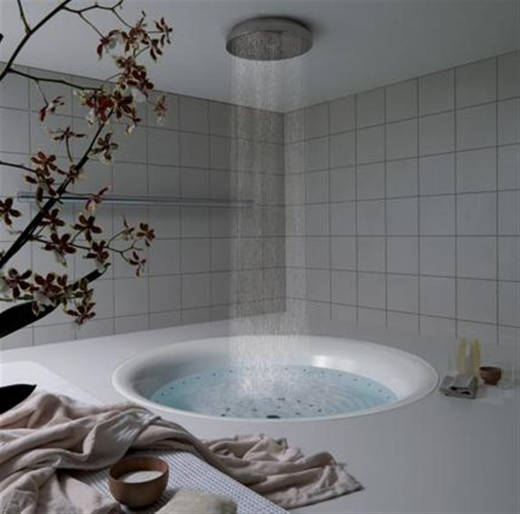Luxury bathroom bathtub shower and decoration
