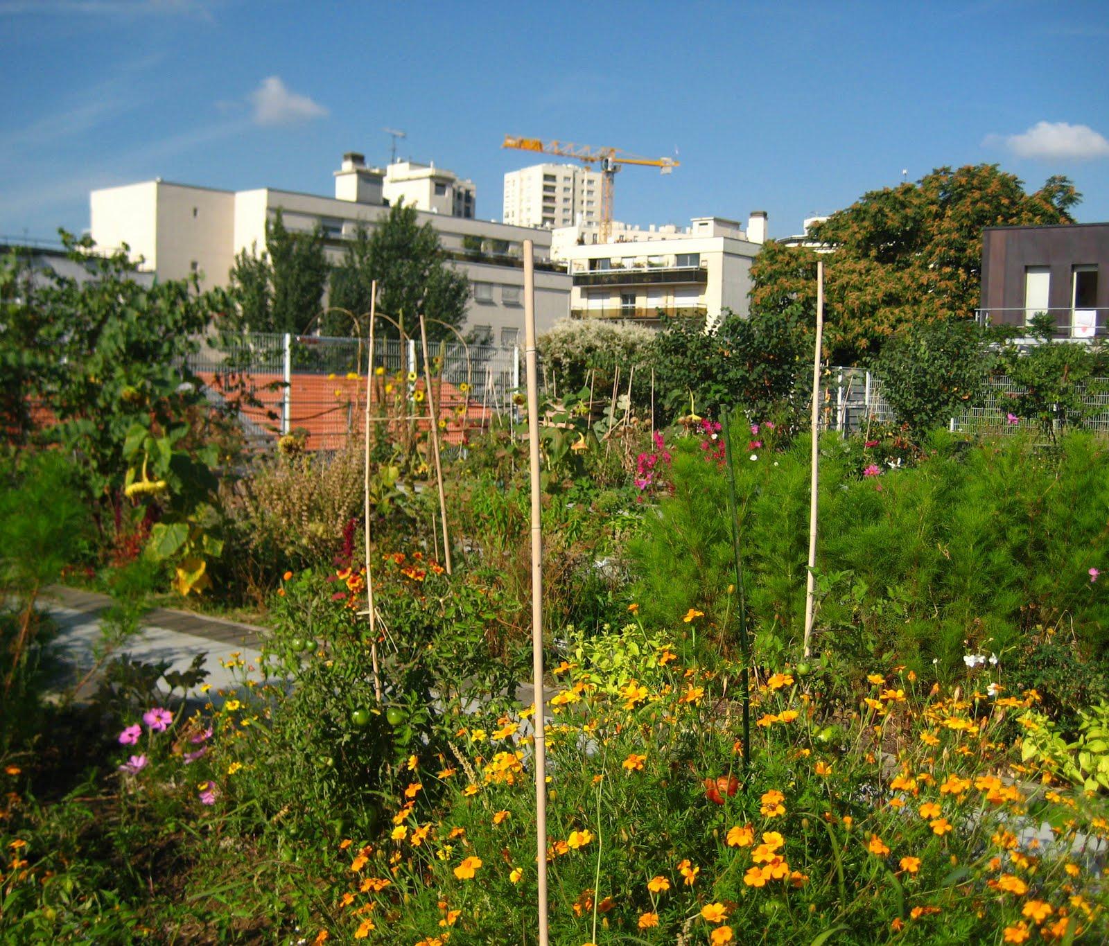 La banque du miel promenade en zone de butinage for Jardin sur le toit