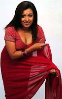 Actress in blouse hot saree still 19