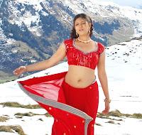Actress in blouse hot saree still 20