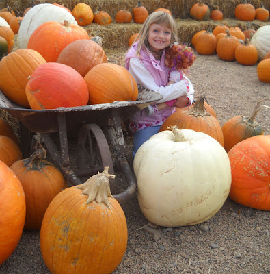 Fall Beautiful Fall Rocky Mountain Pumpkin Ranch The
