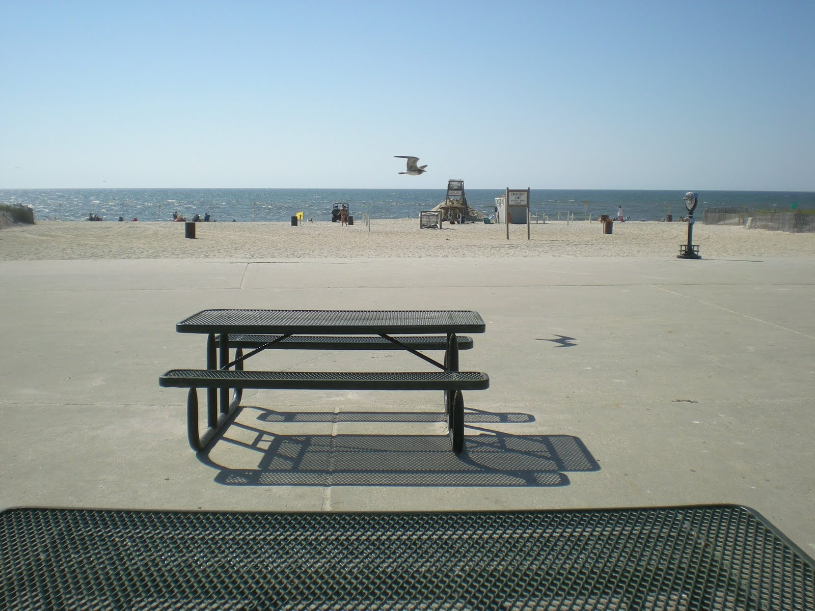 Robert Moses Beach After Labor Day Weekend 2010