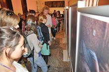 Wystawa w Radomiu