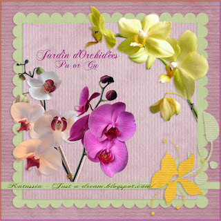 Flowers Orchids Preview