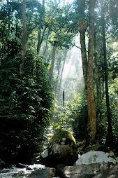 Ulu Chepor, Perak