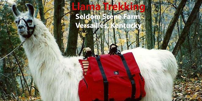 Llama Treks at Seldom Scene Farm in Kentucky