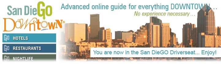 SDGOdowntown BLOG
