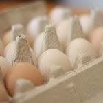 En vacker dag ska vi lyckas med att kläcka fram kycklingar...