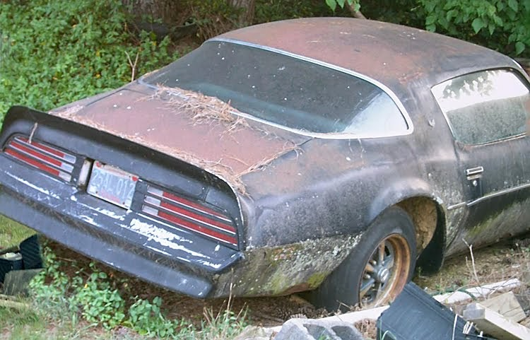 Cheap Muscle Cars For Sale >> Junkyard Life: Classic Cars, Muscle Cars, Barn finds, Hot rods and part news: Cars in Yards ...