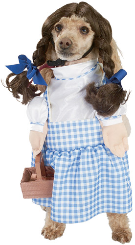follow the piper dogs wearing dorky costumes dog outfits 276x500